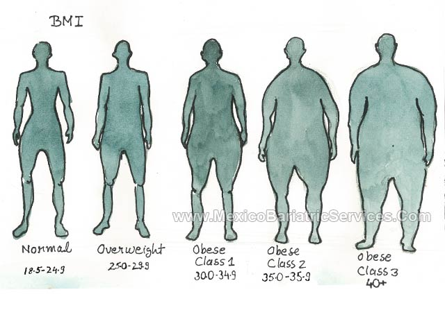 Body Mass Index (BMI) Classification