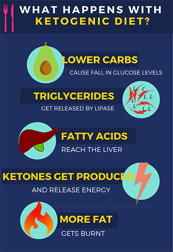 How Ketogenic diet works - infographic