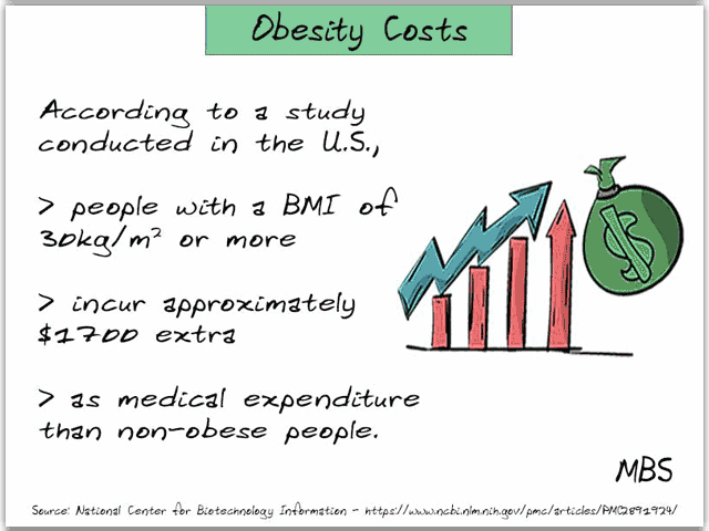 Cost of Obesity Infographic