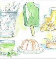 Fantastic Calorie-Free Drinks in Pre-Op Bariatric Diet