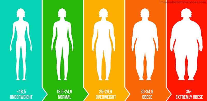 BMI for Adults